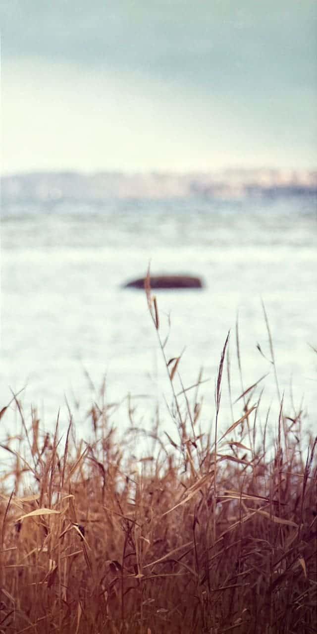 Landerslev Strand billede fra GF Strandhøjgårds brochurer